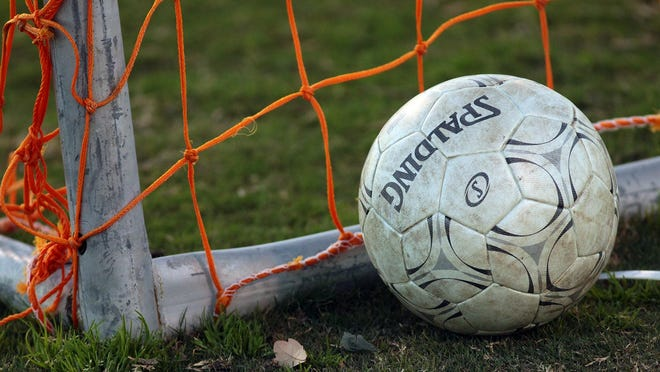 A soccer ball sits by the net.