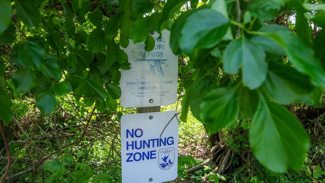 A federal proposal would expand hunting at national wildlife refuges in Rhode Island, including John H. Chafee National Wildlife Refuge in Narragansett, where signs now prohibit the activity.