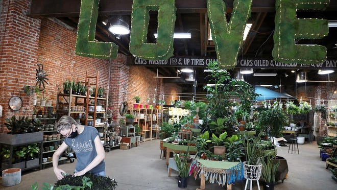 Employee Emily Heller trims clover plants at Urban Jungle on East Passyunk Avenue in South Philadelphia. Houseplants have been popular with customers during the pandemic.