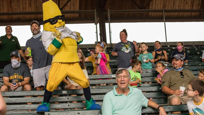 The Savannah Bananas mascot, Split, dances in the stands during a game this summer at Grayson Stadium.