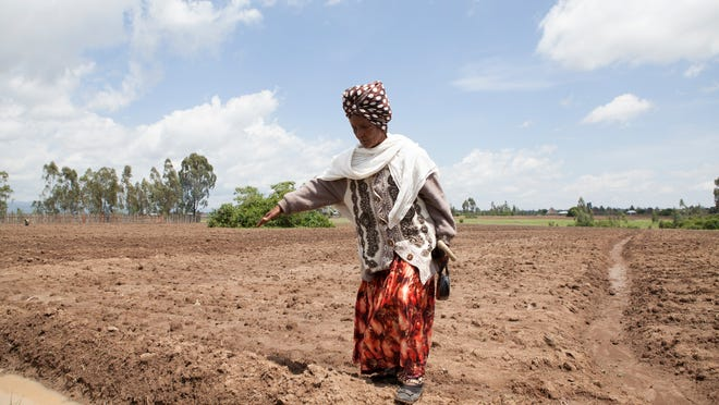Ethiopian farmer Gifty Jemal shows the field she planted with corn this spring. She increased corn yield through a project sponsored in part by Iowa-based seed producer DuPont.