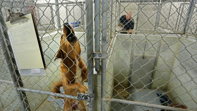 The Almost Home Humane Society is at 1705 S. Second St. in Lafayette.