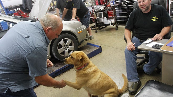 Buddy the shop dog greets each costumer arriving at Bill Doyle's Auto Repair Shop on Harding Highway East. Doyle, right, who opened his business in 2004, sits in the path of a proposed re-route of Ohio 309 to accommodate expansion of Marion Intermodal Center on Marion's eastside.
