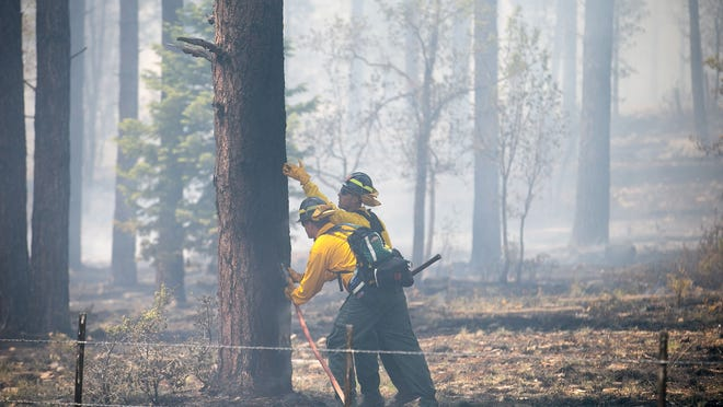 Black Timber Engine 52 firefighters water down a tree near the Slide Fire. The blaze has burned about 7,500 acres between Sedona and Flagstaff. Containment lines carved out by hotshot crews also helped to slow the fire's progress.  Michael Schennum/The Republic Black Timber Engine 52 firefighters water down a tree at the Slide Fire in Flagstaff on Thursday, May 22, 2014.