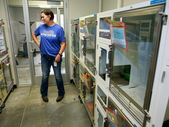 Director Stacie Voss stands inside one of the rooms where cats are being quarantined on Friday at the Farmington Regional Animal Shelter.