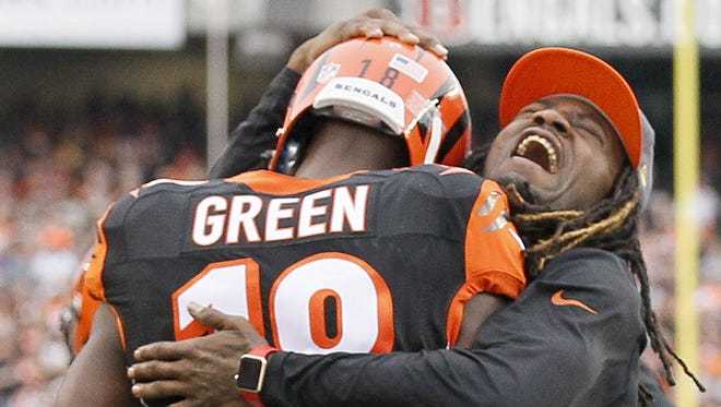 The Cincinnati Bengals celebrated an AFC North division title from their hotel rooms on Sunday as the Steelers lost to Baltimore.