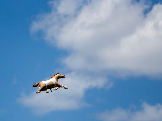 A horse balloon floats into the sky at during Point-to-Point at Winterthur in Greeville on Sunday afternoon.