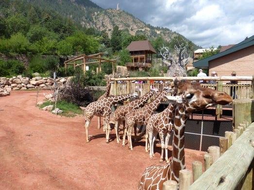 Tripadvisor Best Amusement Parks Zoos And Aquariums