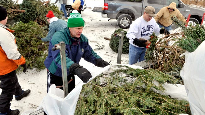 Joel Spalding (green hat) is joined by other members of the LeSauk Township Area Lions Club as they unload Christmas trees at the Sartell compost site for the club's annual fundraiser.
