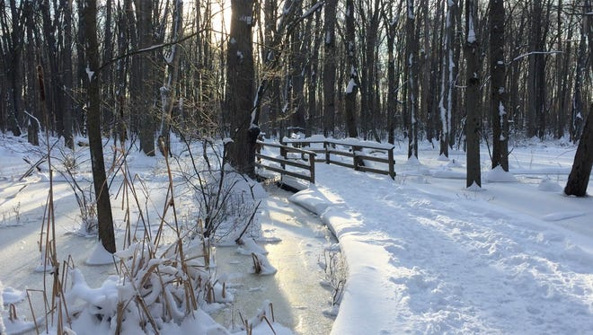 Morning sun shines across a snow covered trail at Tinker Nature Park.