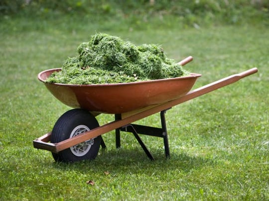 Grass clippings can reduce your need for fertilizer since they're rich in nitrogen and organic material.