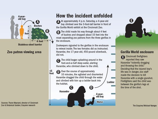 How the incident unfolded.