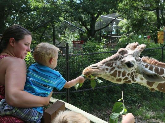 Shani_Giraffe.jpg