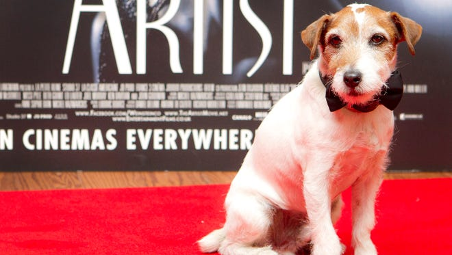 "Uggie the dog who starred in the film ""The Artist,"" attends a special screening at a London cinema on Jan. 10, 2012. The film is among many animal-related films mentioned in the book ""Animal Stars,"" a behind-the-scenes look at how trainers get everything from badgers to bears to safely do what dazzles. Set for release Sept. 25, the book is co-written by the head of the American Humane Association, whose entertainment unit is the industry's only sanctioned animal welfare program and is celebrating its 75th anniversary this year."