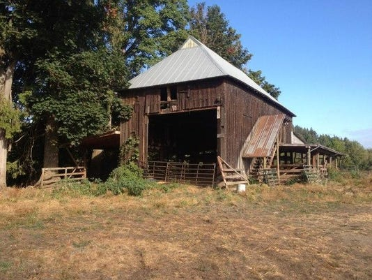 The_Nicky_Farm