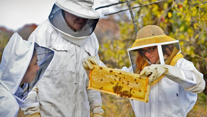 Beekeepers Erin Gutwasser, left, and Amanda Loewen, right, look over one of their hives with Vern Heise, vice president of the Tri-County Beekeepers Association Sunday near Kimball. They were looking at the hive's condition to see how they can help the hive to winter over.