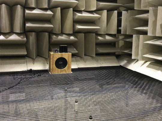 An anechoic chamber used during a study conducted by