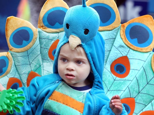 Sixteen-month-old Clark Pennington, of Covington, sported his peacock plumage at a Halloween costume contest on Fountain Square last year.