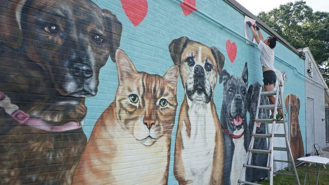 Local artist Joanna Vespia,  known in part for her pet portrait work, has painted a collage of dogs and cats, including depictions of some that were housed at the shelter, onto the side of Humane Society building.