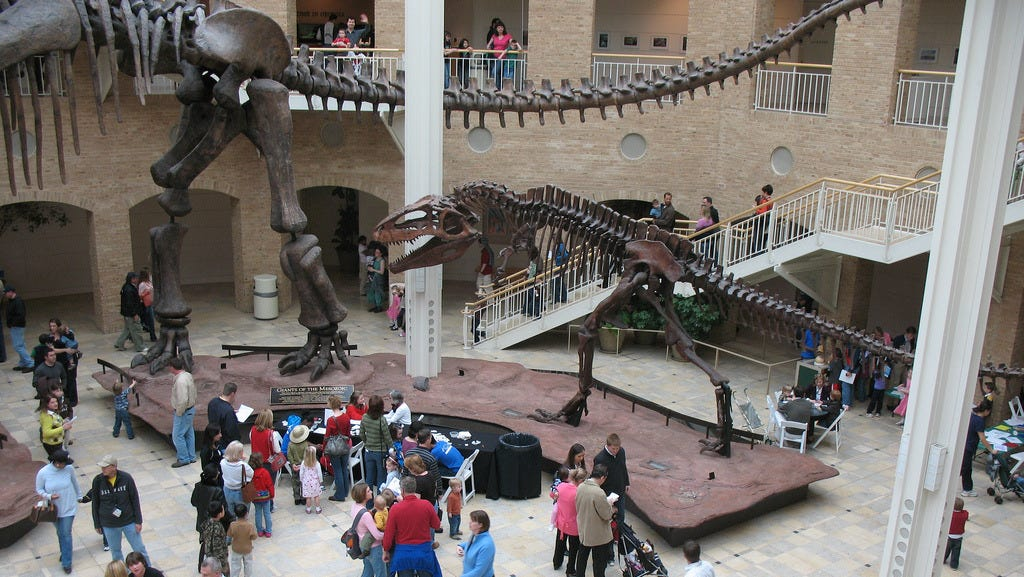 Fernbank Museum of Natural History, Atlanta: If you're in the southeast United States, you'll find the largest natural sciences museum in the region in the Fernbank Museum of Natural History in Atlanta. The museum is the only place on earth where you can see a full Argentinosaurus skeleton, the largest dinosaur ever discovered.