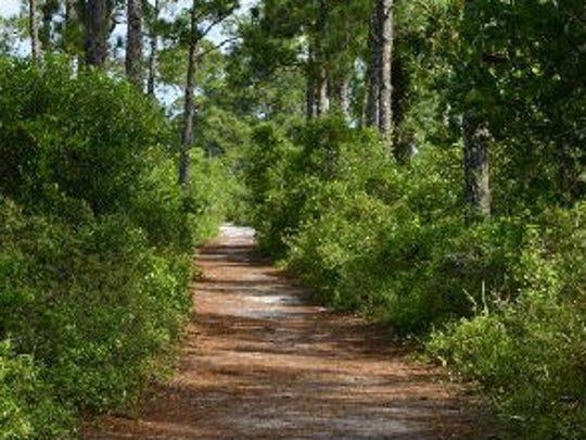 Halpatiokee Park, 8303 S.W. Lost River Road in Stuart,