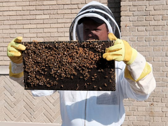 Brian Peterson-Roest, co-founder of Bees in the D, holds a frame of honey bees on the roof of the former Detroit News building in Detroit on Thursday, April 26, 2018. The nonprofit conservation group installed a hive on the roof.