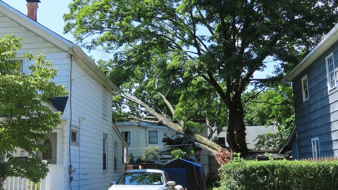 A tree limb from a large tree in the backyard of 29 Orchard St. in Port Jervis fell onto the roof of Tri-State Naval Ship VFW Post 7241.