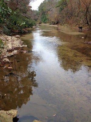 The Buffalo River in Wilkinson County, Miss.