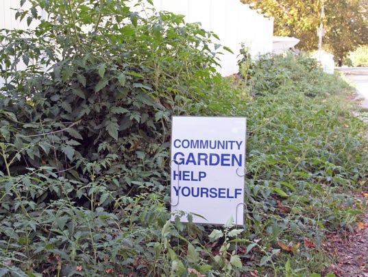 636416989179403514-community-garden.jpg