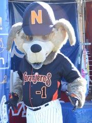 Beto Coyote, la mascota oficial de los Naranjeros de