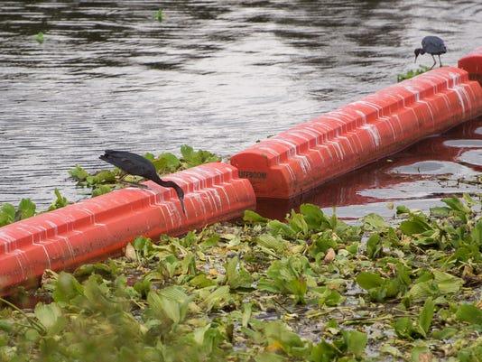 0921 FISH KILL SFWMD CLEANUP PSL