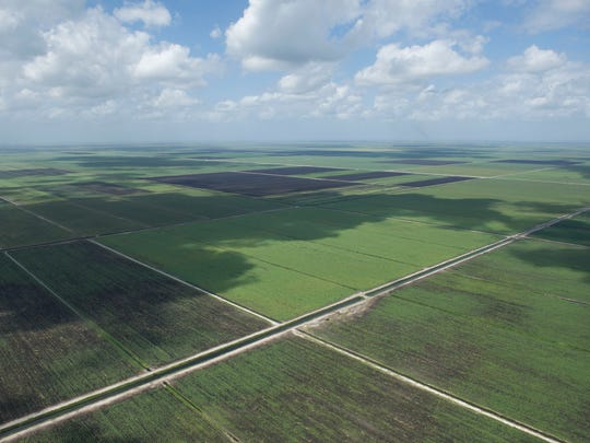 An aerial view of land proposed for a reservoir to store excess Lake Okeechobee water in the original version of Senate Bill 10 is seen March 24, 2017, on a tour with South Florida Water Management District. Senate President Joe Negron overhauled his original plan to get the bill passed through the Senate and the reservoir will now be built on state owned land as opposed to buying 60,000 acres mostly owned by sugar companies.