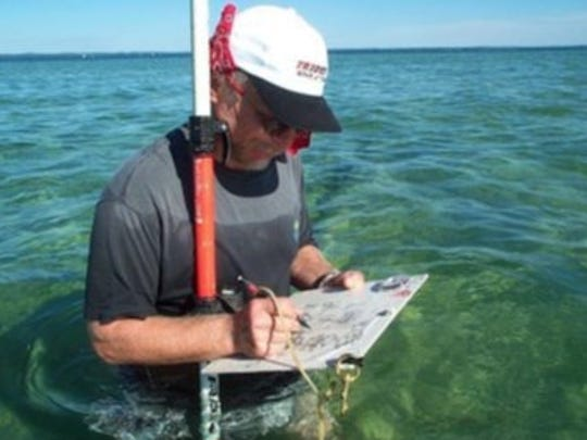 Maritime archaeologist Dan Harrison surveys the remains of the historic Old Mission dock in Grand Traverse Bay.