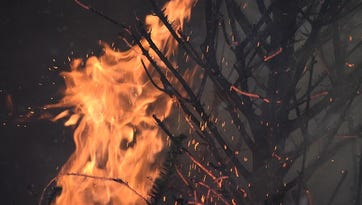 Here are some tips on preventing Christmas tree fires during the holidays