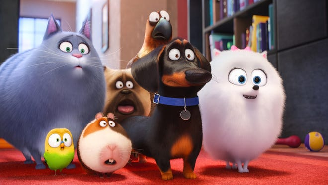"Animals come alive and have an adventure in ""The Secret Life of Pets."""
