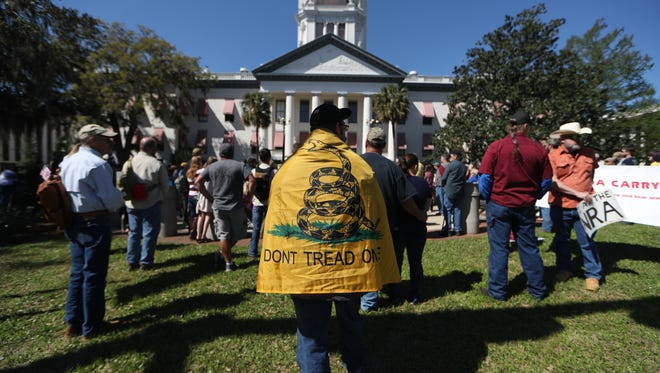 Sean Wilken drapes himself in a Gadsden flag, standing with more than 100 people gathered at the Historic Capitol Sunday for a Pro-2A rally in favor of gun rights, an answer to the recent outcry for restricting the legalization of semi-automatic rifles and building stronger checks on gun ownership that have seen advocates in Florida and around the country.