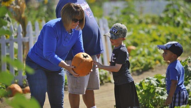 Vossler Farms corn maze and pumpkin patch is open now until Halloween.