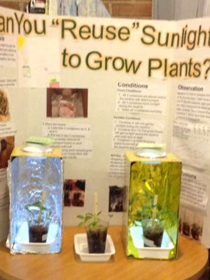 Ryan Lee's STEM project involving solar power to grow plants more efficiently.