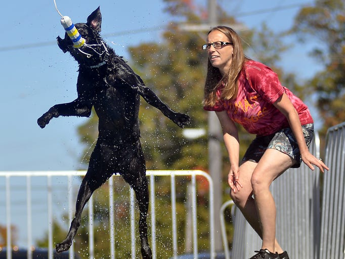 Cathi Wilcox and her dog Maximus entertain Pumpkinfest crowds during the Ultimate Air Dog Show on Saturday afternoon.