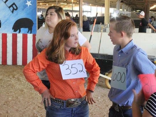 About 35 exhibitors compete in a rabbit show during