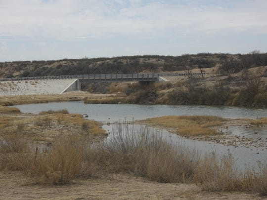 Salt cedars and other invasive species reduce water flow and quality in the Pecos River, March 13, 2018 in Eddy County.
