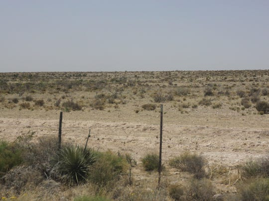 Native grass is beginning to recover on a ranch where