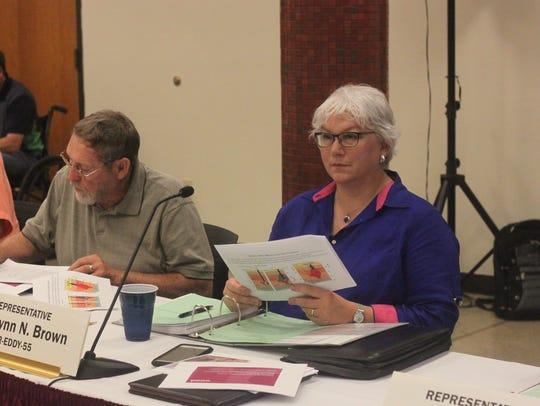 State Rep. Cathrynn Brown (R-55) listens to a presentation