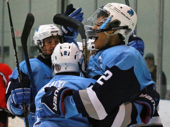 Livonia Stevenson players celebrate after scoring the