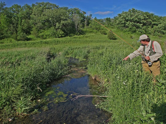 Chris Wasta of Decorah points out a small brook trout swimming past as he fishes South Pine Creek, a natural trout stream northeast of Decorah, in 2010