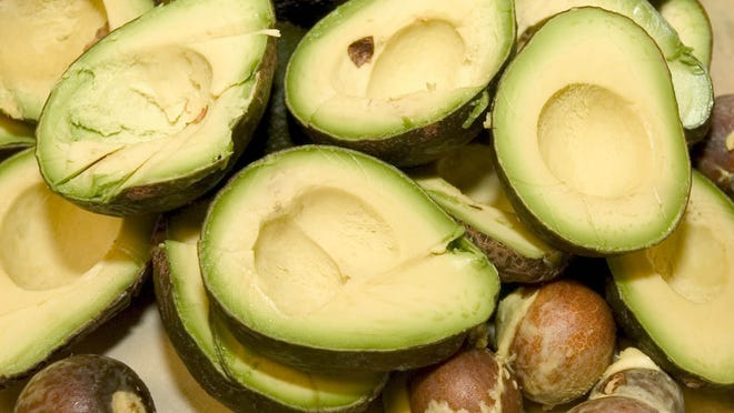 Avocados are plentiful in Southwest Florida this time of year.