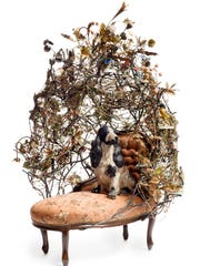 "Nick Cave, ""Rescue,"" 2014, mixed media, including ceramic birds, metal flowers, ceramic basset hound, and vintage settee, 70 x 50 x 40 in. Courtesy of the artist and Jack Shainman Gallery, New York. © Nick Cave."