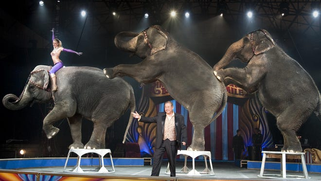 The Garden Brothers Circus features elephants, trained horses, a juggler, contortionists and acrobats.