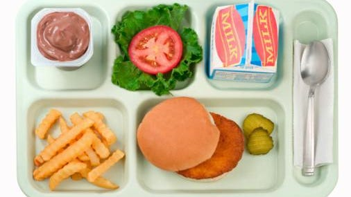 A straight on shot of a traditional school lunch tray featuring a breaded chicken patty burger, also included is a chocolate pudding cup, lettuce and tomato, fries and cold whole milk.
