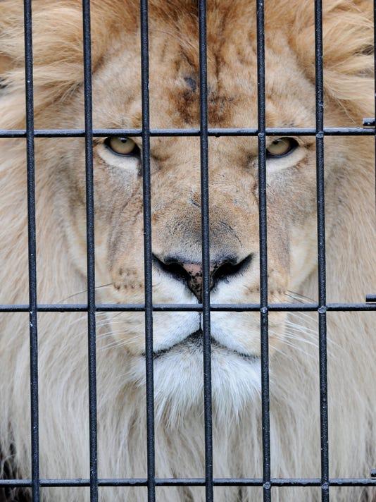 -GPGTab_06-14-2012_Weekend_1_W015~~2012~06~13~IMG_-NEW_Zoo054.jpg_2012_1_1_U.jpg